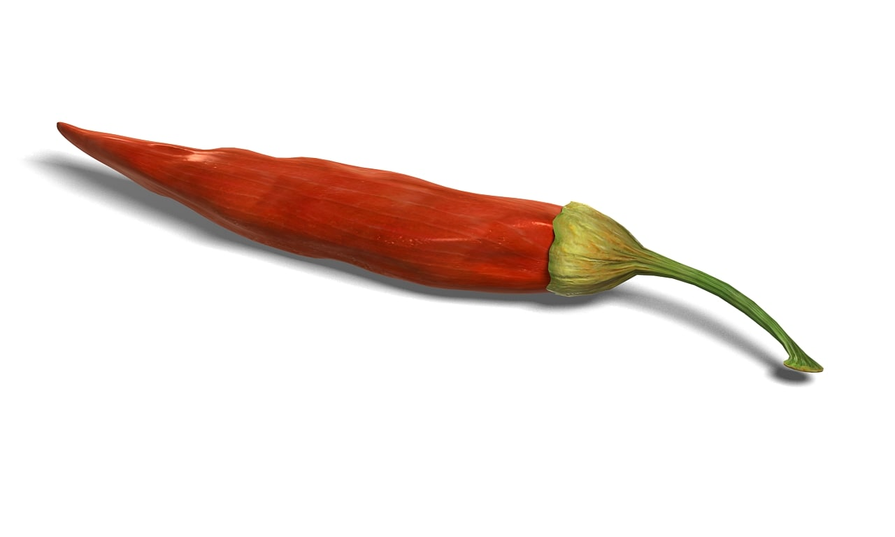 red pepper 3d model