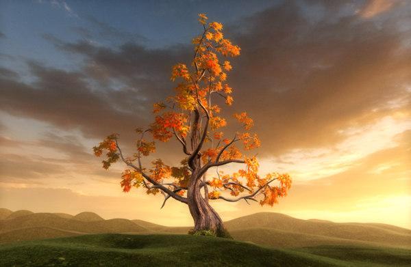 cinema4d fantastic tree