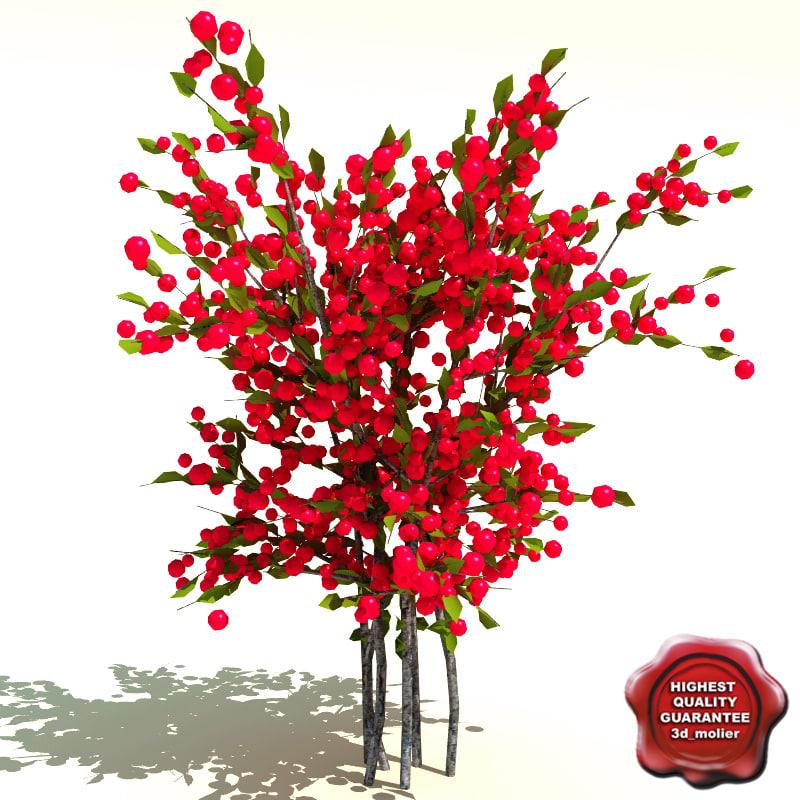 3d model ilex verticillata red winterberry