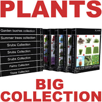 big plants collections v2 3d model