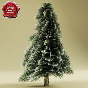 3d fir tree snow model
