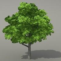 obj tree