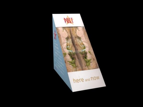 3d sandwich model
