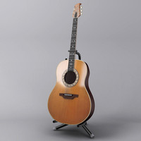 ovation guitar 3ds