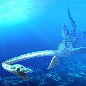plesiosaur animations 3d model