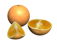 free fruit orange 3d model