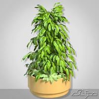 vase big bush 3d 3ds