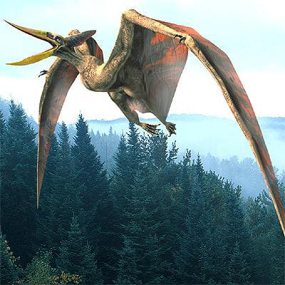 flying pterosaur 3d lwo