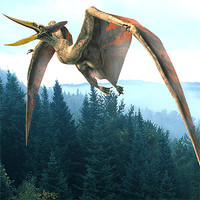 flying pterosaur 3d lwo