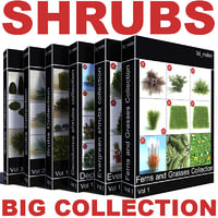 Shrubs Collection Vol6