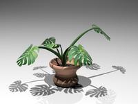 3d plant flowerpot model
