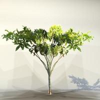 Tree_011.zip