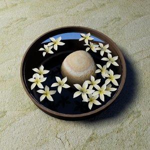 3d flower hawaiian white plumeria