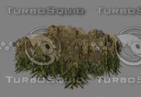 weeds games 3d model
