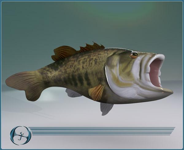 sport big mouth bass 3d model
