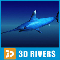 3d swordfish fish model