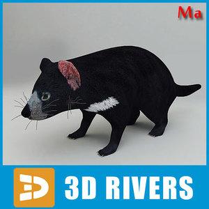 3d tasmanian devil animals