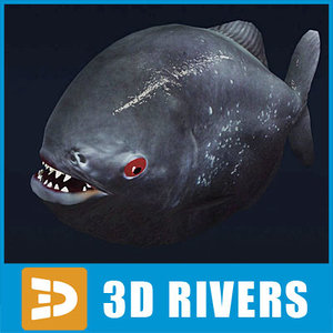 3d model aggressive piranha fish