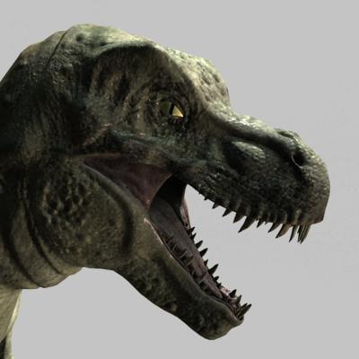 rex 7 3d model