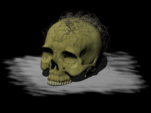 skull blend free