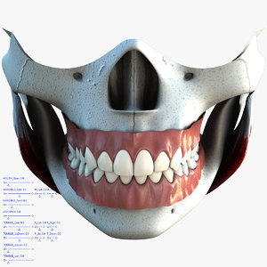 anatomical teeth tongue mouth max