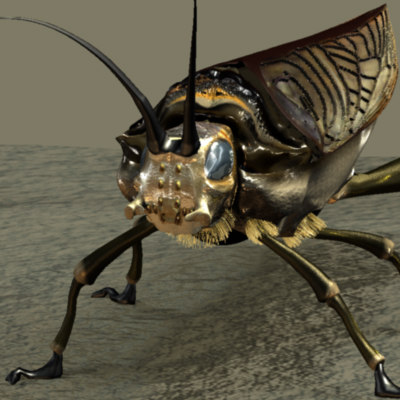 insects 3d obj
