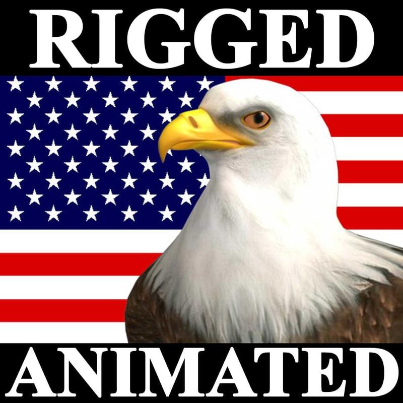 eagle bald animation american 3d model
