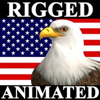 eagle bald animation american 3d model