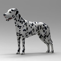 dalmatian dog 3ds