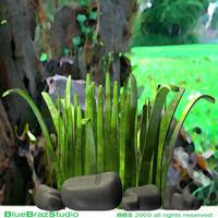 3d model cartoon grass