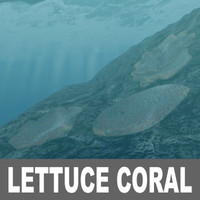 3ds max lettuce coral