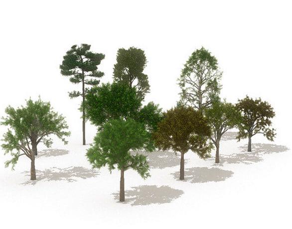maya 12 european trees