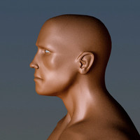 athletic character arnold 3d model