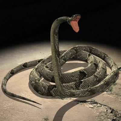 snake viper mamba 3d model