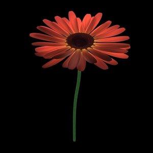 flowers gerbera 3d model