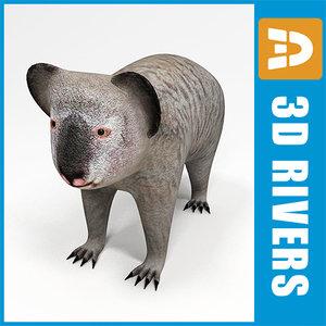 3d model of koala animals