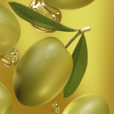 ma olives fruit