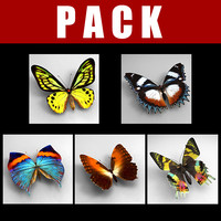 Pack_Butterfly
