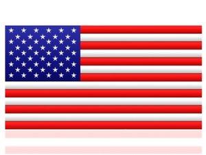 digital usa flag max