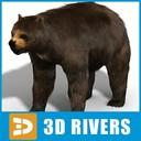 Arctodus 3D models