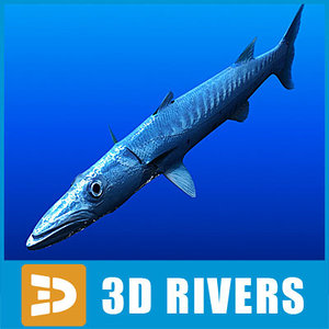 3ds barracuda dangerous fish