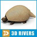 Glyptodon 3D models