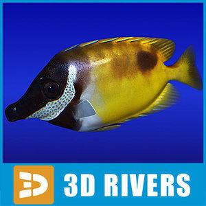 3d model rabbitfish fish