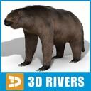 Megatherium 3D models