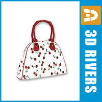 3d max ladies bag