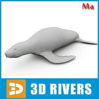 3d fbx polygonal fur seal