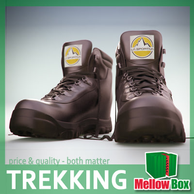 la sportiva trekking shoes 3d model