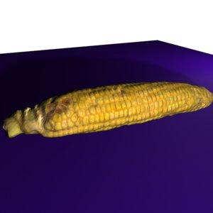 3d model accurate corn