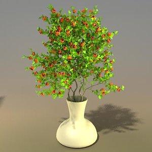 flower bouquet ma