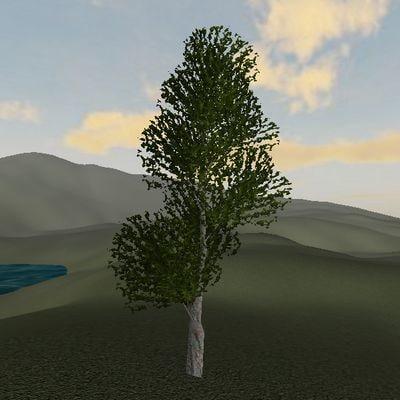 3d tree leaves